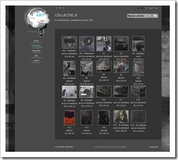 Screenshot schilderijen portfolio AnV