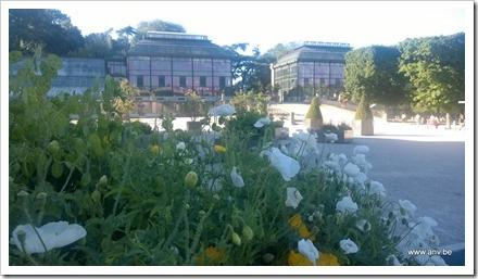 Jardin des Plantes serres