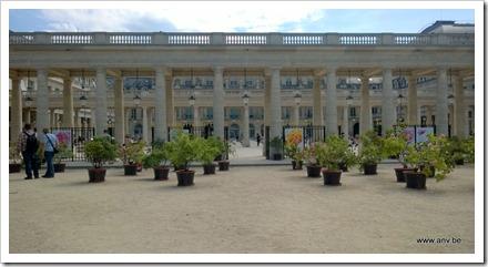 Palais Royale - rozen tentoonstelling