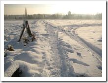 20 december - door de velden
