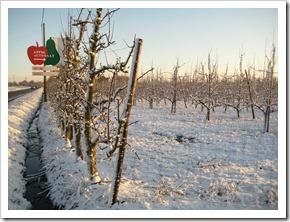 17 december - bestemming bijna bereikt: de appelautomaat :-)