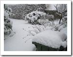 19 december - tuin