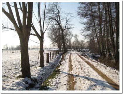 landbouwweg, Hasselt